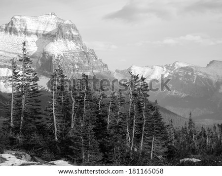 Glacier National Park, Montana, United States, black and white version - stock photo