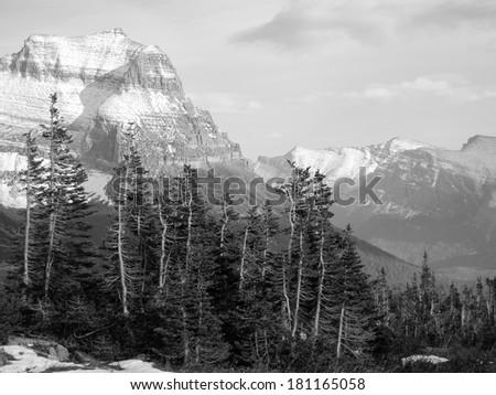 Glacier National Park, Montana, United States, black and white version - stock photo