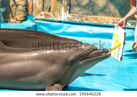 Glad beautiful dolphin in blue water in the swimming pool on a bright sunny day paint brush and paint on the representation - stock photo