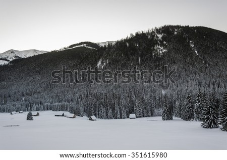 Glade Chocholowska in winter scenery  - stock photo