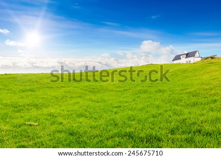 Glade green grass under the blue sky. Sunny. The house in the background. - stock photo