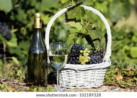 glass and bottle of white wine with grapes in basket - stock photo