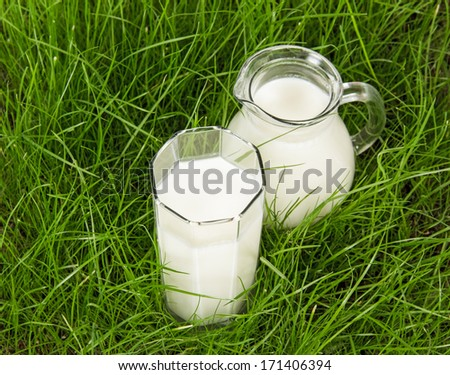 Glass and jug with fresh milk on green grass - stock photo