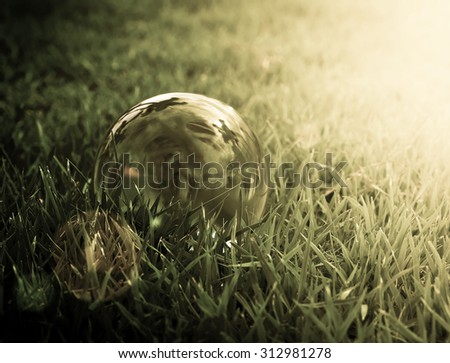 Glass ball on green grass in sunset dark light - stock photo