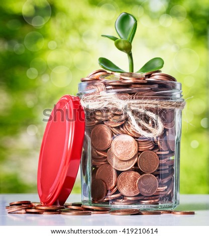 Glass bank jar with coins and growing sprout on green tree background. Saving money concept