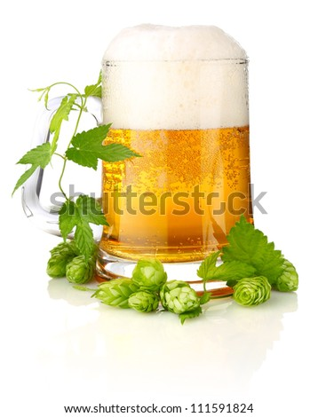 glass beer with rich and aromatic hop isolated on white background - stock photo
