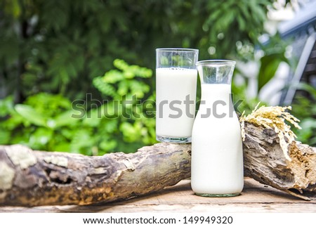 Glass bottle and glass with milk - stock photo