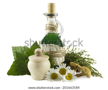 Glass bottle with green remedy and healing herbs and mushrooms, homeopathic still life isolated on white