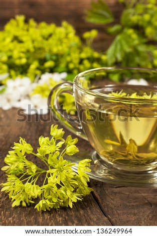 glass cup is of green tea with herbs on the wooden background