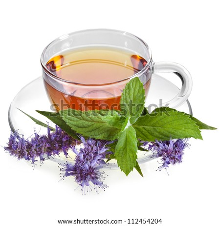 Glass Cup Tea with Mint Leaf and herb flower, Isolated on White Background. - stock photo