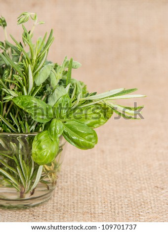 Glass filled with fresh Herbs on textile background