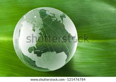 Glass globe on green leaf - stock photo