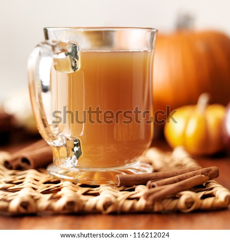 glass of apple cider with fall themed background closeup