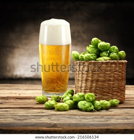 glass of beer and green plant  - stock photo