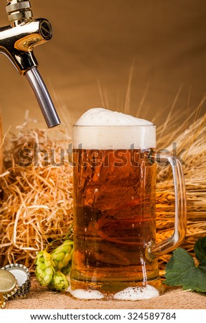 Glass of beer and spikes of barley on table