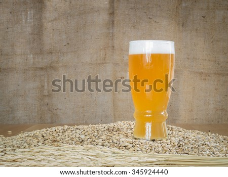 Glass of beer on malt grains  - stock photo