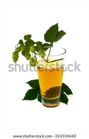 Glass of beer with hops isolated on white background