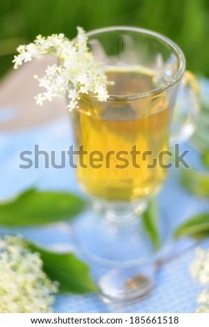 glass of elderberry tea - stock photo