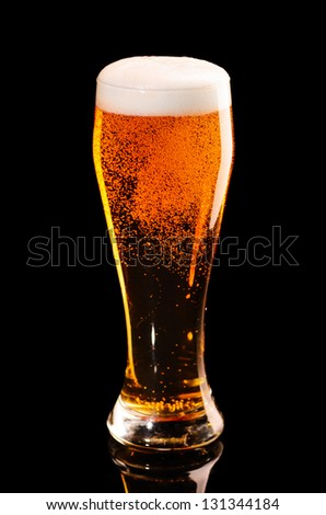 glass of fresh lager beer on black with reflection - stock photo