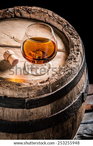 Glass of good cognac in the distillery basement - stock photo