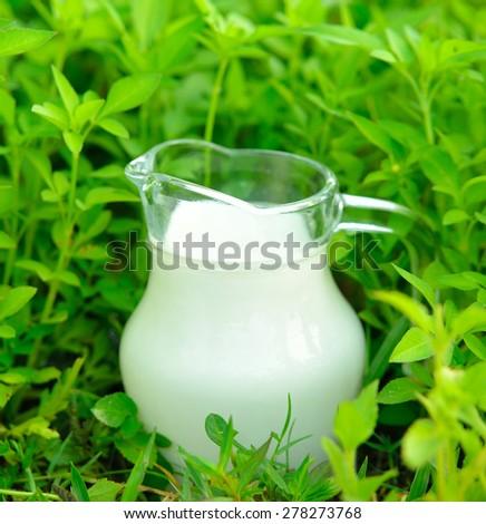 Glass of milk  on green glass  - stock photo