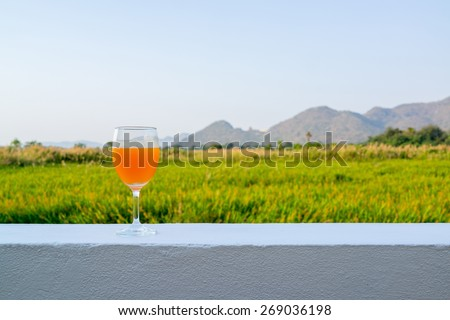 Glass of orange drink on a white wall with background of mountains and grass field in the distance - stock photo