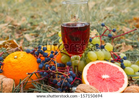 glass of red wine among a fruits in the grass