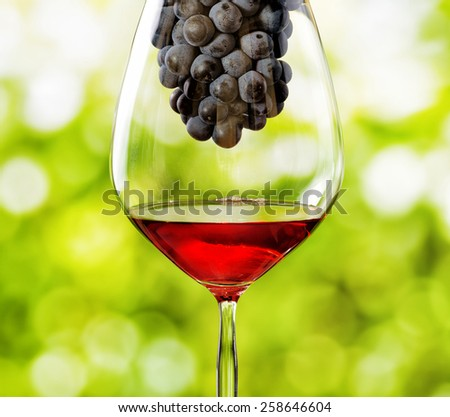 Glass of red wine and bunch of grapes on nature background. - stock photo