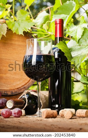 Glass of red wine, bottle and barrel on the background of grape leaves - stock photo