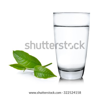Glass of water and tea leaves ilsolated on white background - stock photo
