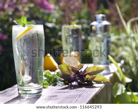 Glass of water with ice and mint on blur green background.