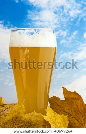 glass of wheat beer between fall leaves, sky background