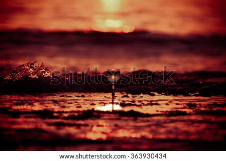 Glass of white vine with reflections of sun and sea on the background of beautiful sunset. Selective focus. Toned. - stock photo