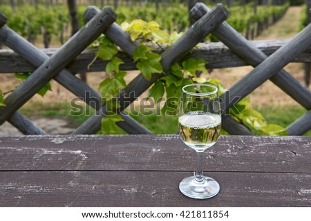 glass of white wine and a reflection in the background of wicker fences