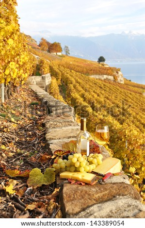 Glass of white wine and chesse on the terrace vineyard in Lavaux region, Switzerland