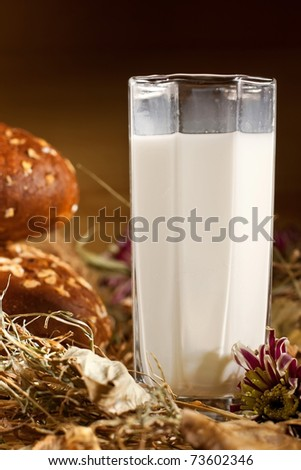glass og milk wirh bread - stock photo