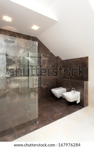 Glass shower in bathroom with brown tiles on walls