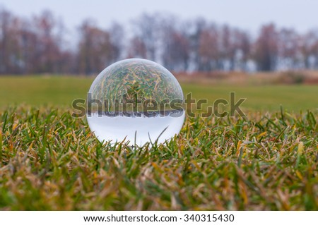 Glass transparent ball on green grass and park background . Texture, outdoors - stock photo