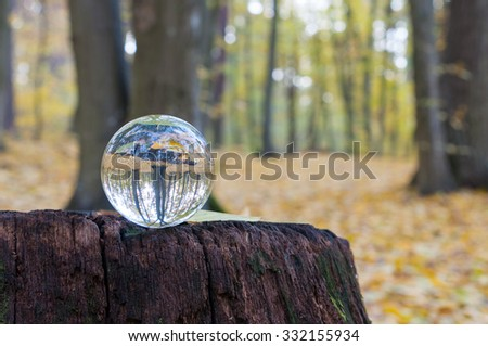 Glass transparent ball with autumn forest on background and wooden surface. Soft focus. With empty space for text. - stock photo