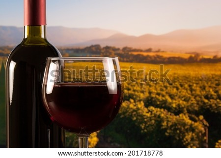 glass with red wine and bottle on the vineyards background - stock photo