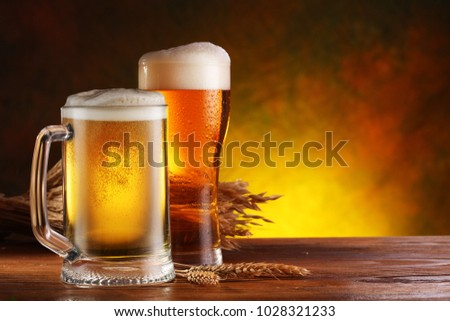 Glasses of beer and bunch of wheat  on the wooden table.