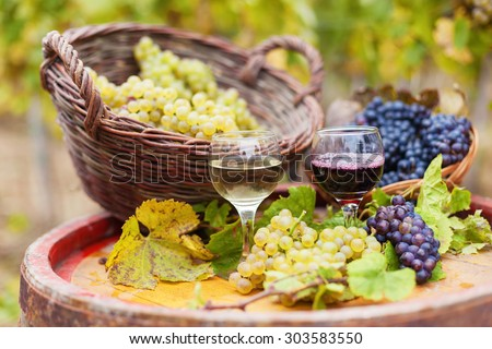 Glasses of red and white wine and  fresh grapes .Vineyard in a background.Shallow doff