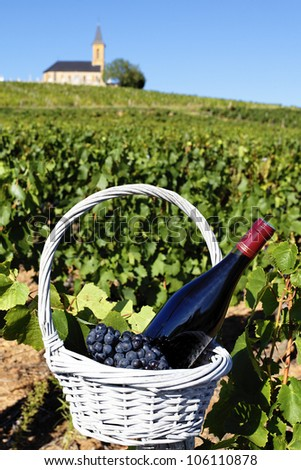 glasses of wine and grapes in basket in a field - stock photo
