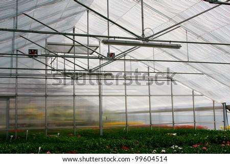 glasshouse. - stock photo