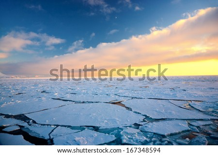 Global warming at the Arctic North Pole, Svalbard.  - stock photo