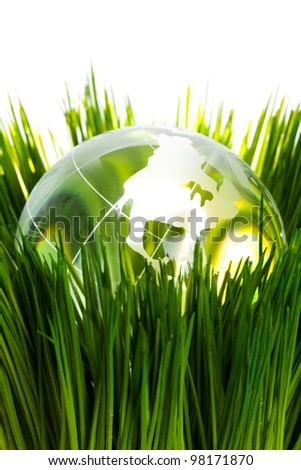 Globe and green grass, concept of Environmental Conservation - stock photo