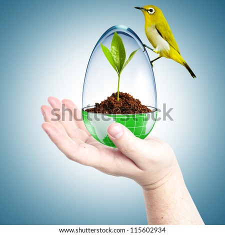 Globe cover with glass with dirt inside and yellow bird on top in a man's hand. Concept for environmental friendly - stock photo