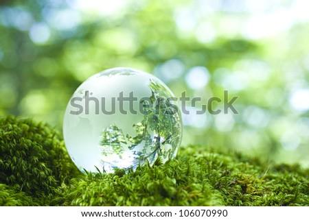 globe in nature - stock photo