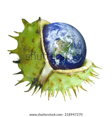 Globe protected in a broken chestnut shell, symbol of environmental conservation, ozone layer, greenhouse gas, collage - stock photo