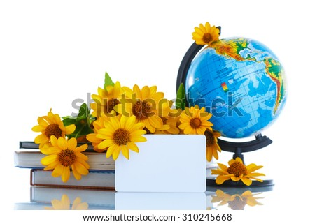 Globe with books and flowers on a white background - stock photo